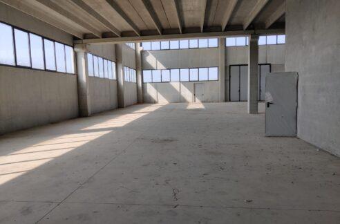 capannoni di nuova costruzione